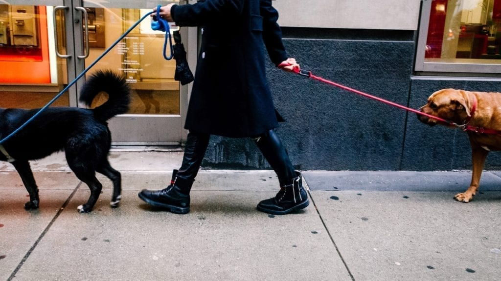 composition and triangles in street photography